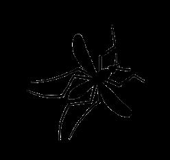 Logo La Guilde des Chasseurs de Moustiques tigres